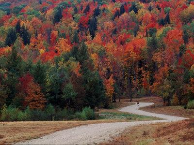https://imgc.allpostersimages.com/img/posters/central-vermont-in-the-fall-usa_u-L-P3XLCS0.jpg?p=0