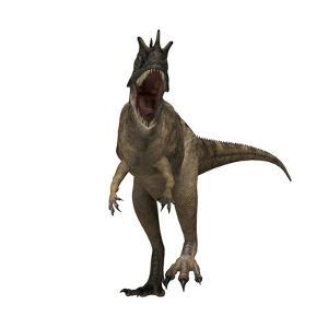 Ceratosaurus Dinosaur from the Jurassic Period