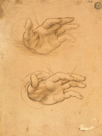 Drawing of Hands by Cesare da Sesto