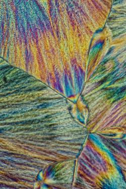 A Photomicrograph, a Picture Taken Through a Microscope, of Cholesterol Acetate by Cesare Naldi