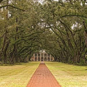 The Antebellum Mansion and Grounds of Oak Valley Plantation by Cesare Naldi
