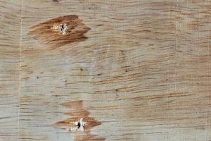 Traces on Wood by chabkc