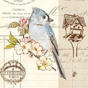 Bird Sketch 4 by Chad Barrett