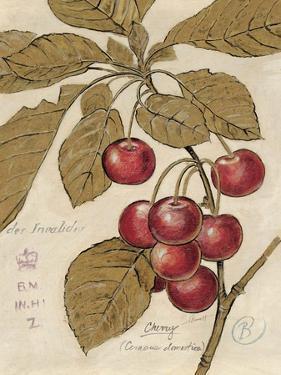 Cherry Etching by Chad Barrett