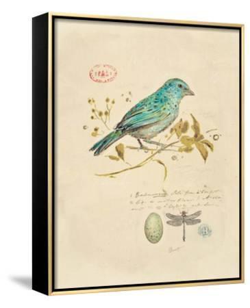 Gilded Songbird 1 by Chad Barrett
