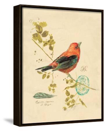 Gilded Songbird 3 by Chad Barrett