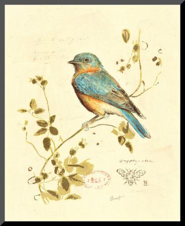 Gilded Songbird IV by Chad Barrett