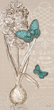 Hyacinth Bulb by Chad Barrett
