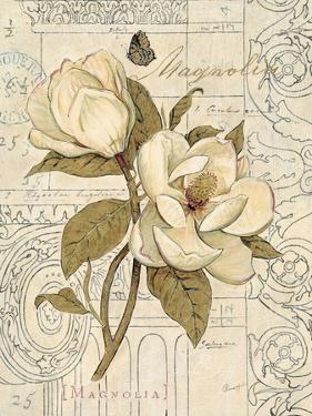 Magnolia Etching by Chad Barrett