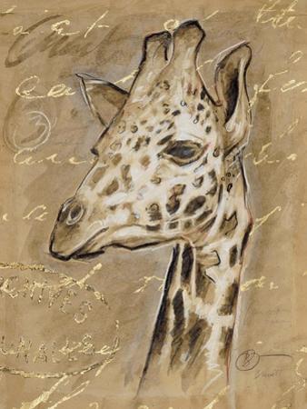 Safari Giraffe by Chad Barrett