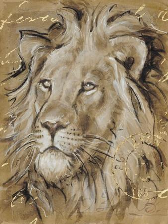 Safari Lion by Chad Barrett