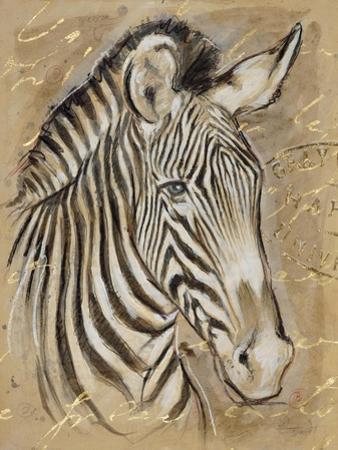 Safari Zebra by Chad Barrett