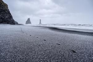 Reynisdrangar Spires Rise from the Ocean with Fresh Snow Pellets by Chad Copeland