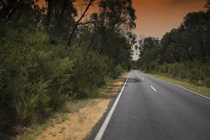 Road under Smoke Filled Skies from Brush Fire in Grampians, Australia by Chad Copeland