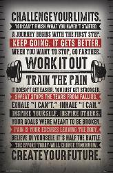 Affordable Fitness Posters for sale at AllPosters com