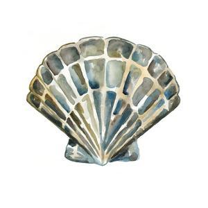 Aquarelle Shells IV by Chariklia Zarris