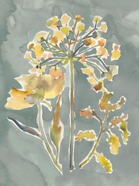Collected Florals II by Chariklia Zarris