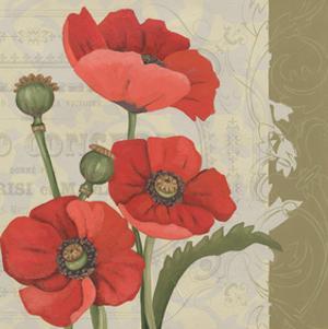 Paris Poppy II by Chariklia Zarris