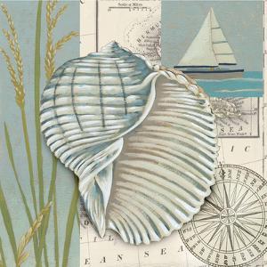 Seaside Shell I by Chariklia Zarris