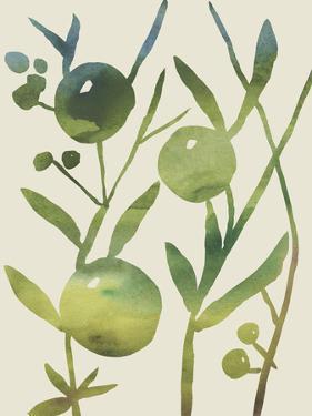 Spring Sprig IV by Chariklia Zarris