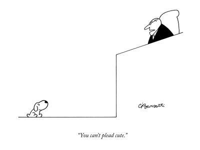 """You can't plead cute."" - New Yorker Cartoon"