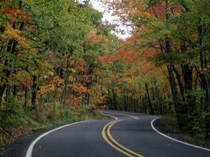 Empty Road Surrounded by Fall Foliage, Upper Mi by Charles Benes