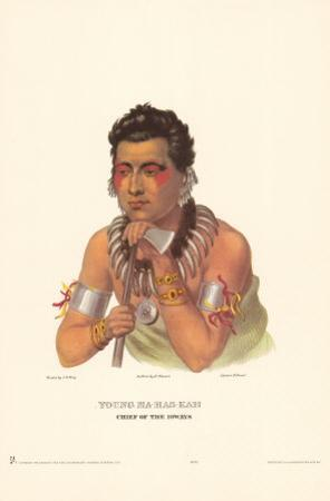 Chief of the Ioways by Charles Bird King