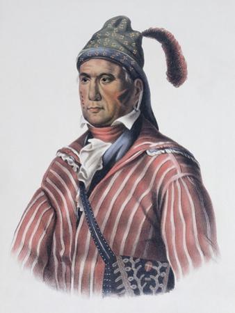 Menawa (Oakfuskee Chief) by Charles Bird King