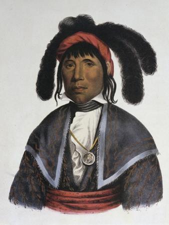 Micanopy (Seminole Chief) by Charles Bird King