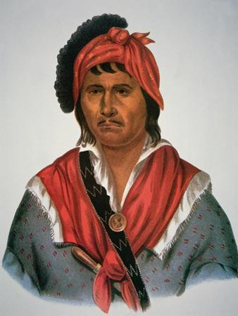 Neamathla Chief, 1826 by Charles Bird King