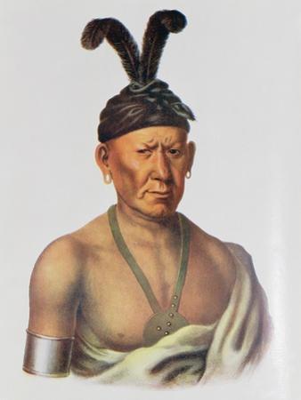 Wakechai or 'Crouching Eagle', a Sauk Chief by Charles Bird King