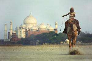 Camel And Taj Mahal by Charles Bowman