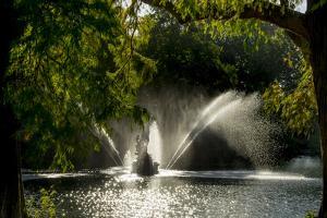 Kew Lake 1 by Charles Bowman
