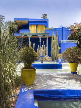Majorelle Gardens, Marrakech, Morocco, North Africa, Africa by Charles Bowman