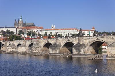 https://imgc.allpostersimages.com/img/posters/charles-bridge-and-the-castle-district-with-st-vitus-cathedral-and-royal-palace_u-L-PQ8PFN0.jpg?p=0