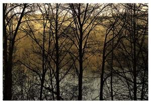Three Imagenings by Charles Britt