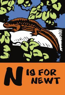 N is for Newt by Charles Buckles Falls