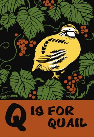 Q is for Quail by Charles Buckles Falls
