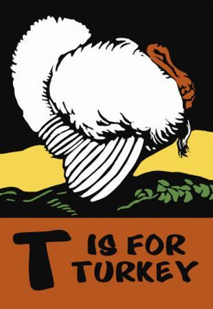 T is for Turkey by Charles Buckles Falls