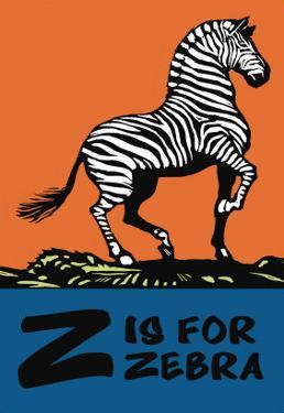 Z is for Zebra by Charles Buckles Falls