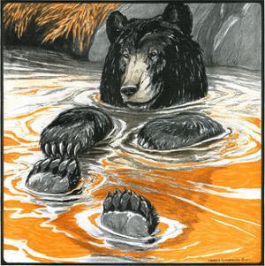 Cool Bear by Charles Bull