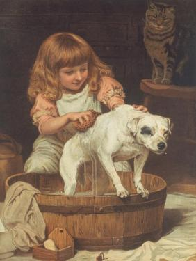 The Order of the Bath by Charles Burton Barber