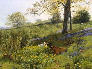 Near Dorking, Surrey by Charles Collins
