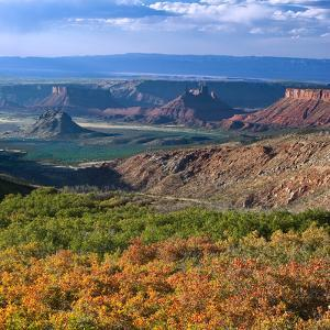 Castle Valley from La Sal Mountain, Moab, Utah, Usa by Charles Crust