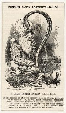 """Charles Darwin, after Charting the """"Descent of Man"""" He Goes Even Lower and Studies Worms"""