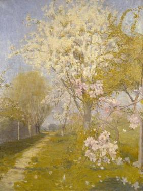 Apple Blossom at Dennemont, 1893 by Charles Edward Conder