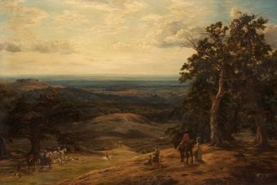 Cub Hunting in the Midlands, 1886