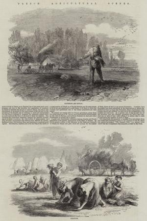 French Agricultural Scenes