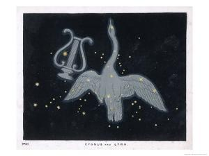The Constellation of Cygnus, a Flying Swan, and Lyra, That of an Ancient Greek Lyre by Charles F. Bunt
