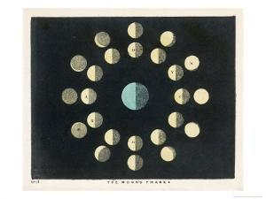 The Moon's Phases by Charles F. Bunt